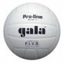 Мяч волейбольный Gala Pro-Line Competition белый - черный
