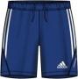 Adidas Волейбольные Шорты P92619