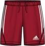 Adidas Волейбольные Шорты P92618