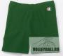 Шорты волейбольные Champion Women's Shorts 101915 зеленые (женские)